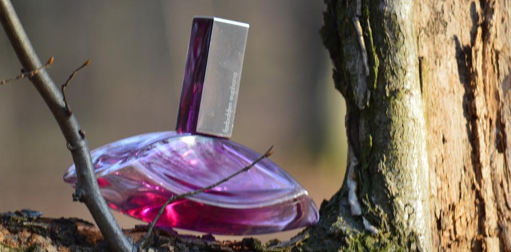 parfumuri ietine Calvin Klein Euphoria artistica