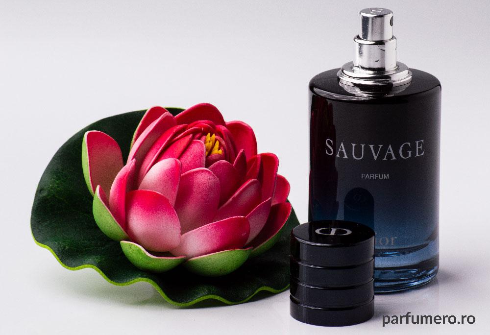 parfum-Christian-Dior-Sauvage