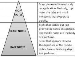 Cum verific ingredientele unui parfum?